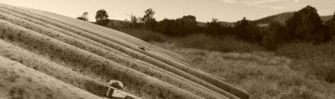 Veggies, tin and rosewood posts