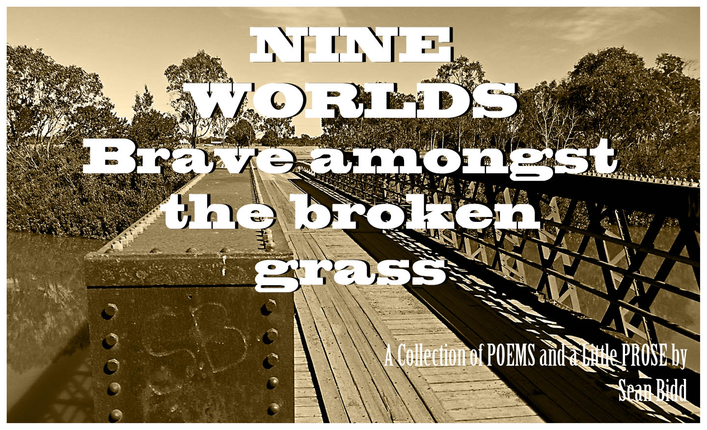 Book: Nine Worlds Brave amongst the broken grass